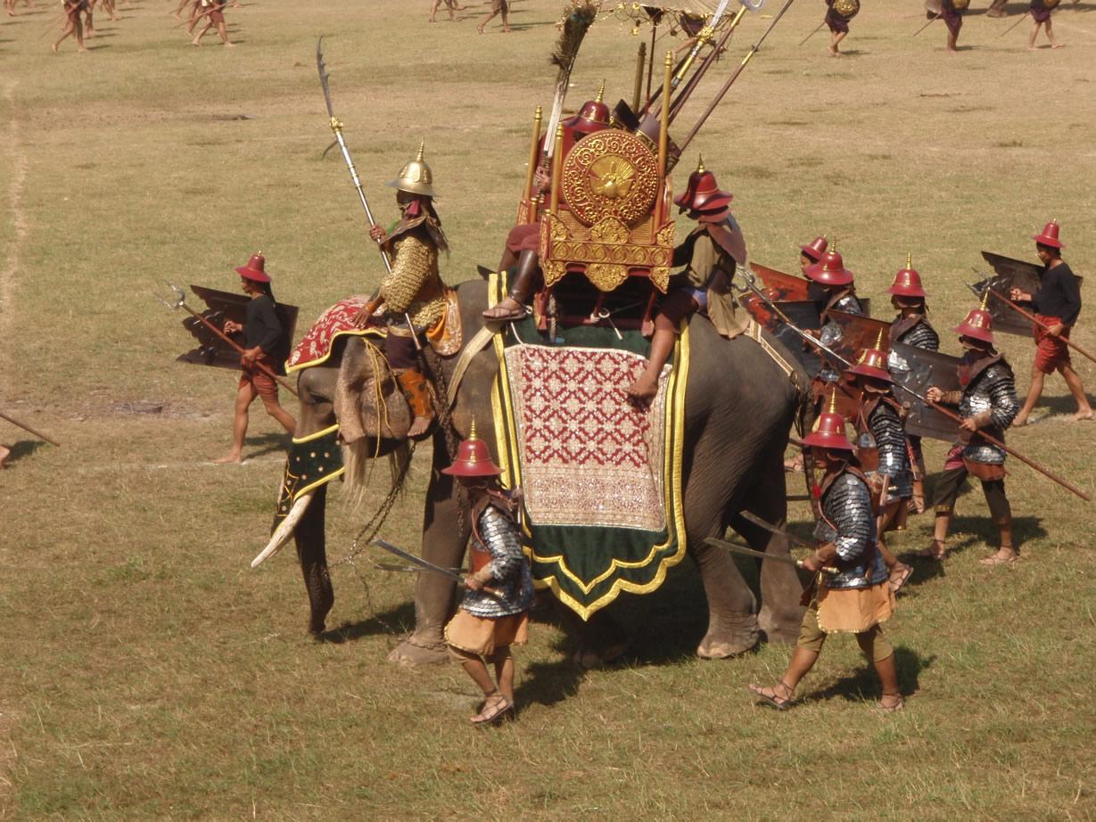 Elefantes maltratados en Surin parte del documental chileno de elefantes