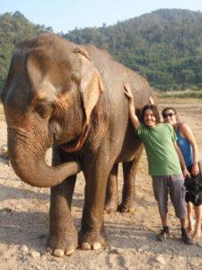 Rodrigo Saez y Maria Jose Martinez-Conde registraron un documental chileno de los elefantes