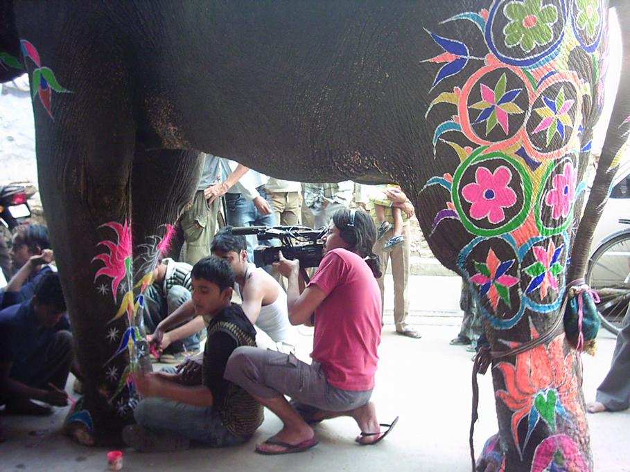Rodrigo Saez grabando en Jaipur a los elefantes